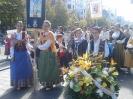 Fiestas del Pilar 2015_12