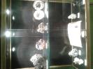Visita al museo Rosa Molas