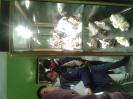 Visita al museo Rosa Molas_8